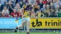 14-man Wexford overhaul Saffrons