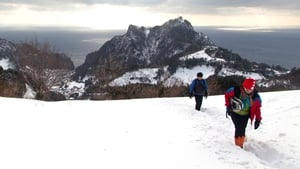 Visitors trek on a snow-covered mountain on Ulleung Island, South Korea (Pic: EPA)