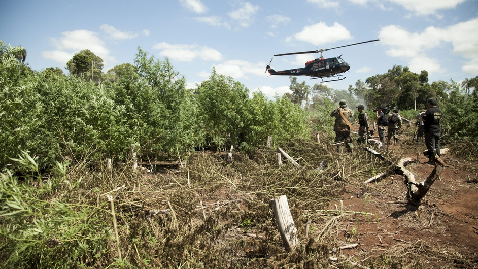 A Paraguayan police helicopter lands near a marijuana plantation, during a drug raid in the locality of Capitan Bado. Narcotics agents destroyed a total of 334 hectares of planted marijuana at a border area with Brazil