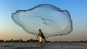 An Indian fisherman throws his net in a small pond on the outskirts of Mumbai, India (Pic: EPA)