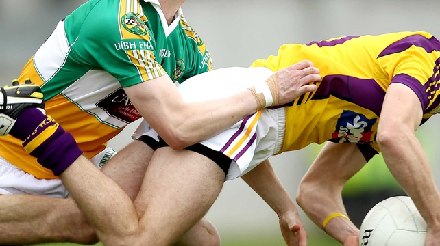 Offaly travelled to Wexford won by 1-16 to 0-06