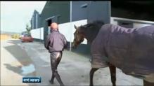 Racehorse trainer Philip Fenton has trial adjourned