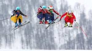 Competitors take part in the quarter-final of the women's Freestyle Ski Cross event at the Winter Olympics in Sochi (Pic: EPA)
