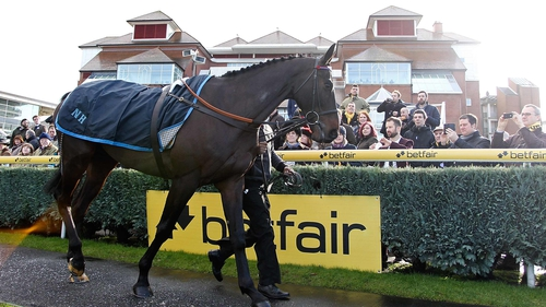 Sprinter Sacre parading at Newbury earlier this month