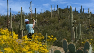 Ernie Els of South Africa plays a shot on the 12th hole during a championship in Arizona