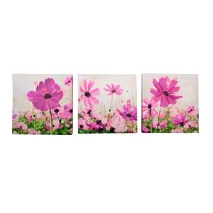 3PK Floral Canvas €6.00