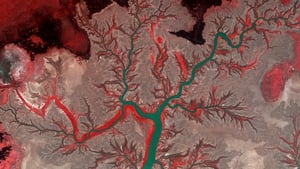 A handout picture from the Korea Aerospace Research Institute shows a false-colour Kompsat-Two satellite image of Kumbunbur Creek in Northern Territory in Australia (Pic: EPA)