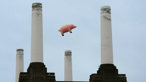 Our proggy porcine pal flew again over Battersea Power Plant in 2011