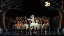 Following recent controversy Neil Francis tells Derek Mooney about his trip to see the ballet Swan Lake