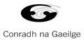 Mícheál Ó Leidhin, Tuairisceoir RnaG