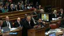 Neighbours give evidence at Oscar Pistorius trial