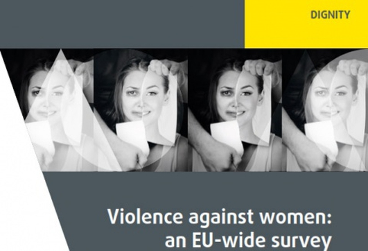 EU-Wide Violence Against Women Report
