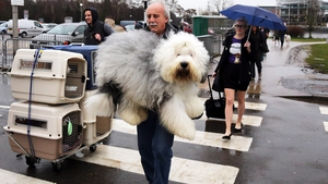 Dogs and their owners arrive to attend the first day of Crufts dog show in Birmingham