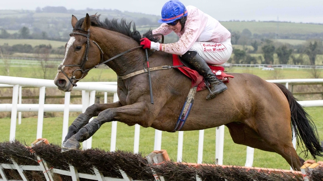 Los Amigos' chances of taking the Irish Grand National will be improved by soft ground