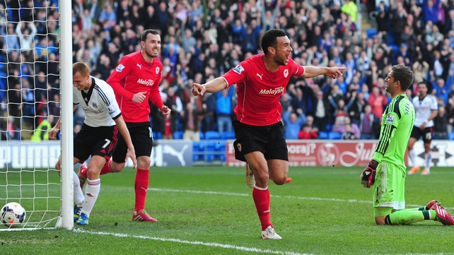 Steven Caulker bagged a brace in Cardiff's victory