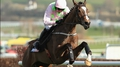 Vautour claims first blood for Ireland