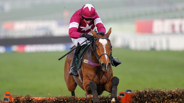 Don Poli being aimed at RSA Chase