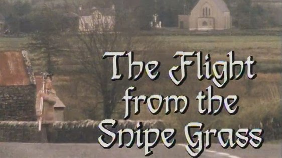 Flight from the Snipe Grass