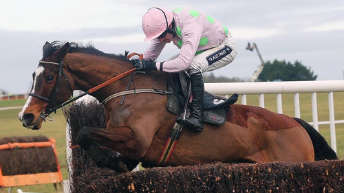 Mikael D'Haguenet is in action for Ruby Walsh