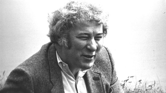 Seamus Heaney © RTÉ Archives 0065/026