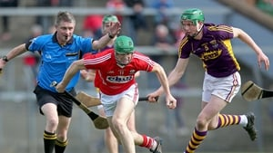 'Play on': Ref Barry Kelly directs the action during Cork's clash with Wexford