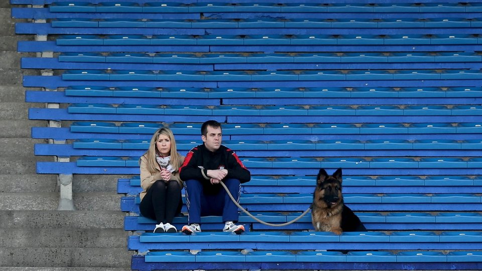 'Taking the lead': Two fans and their dog take in the Dublin v Tipperary game