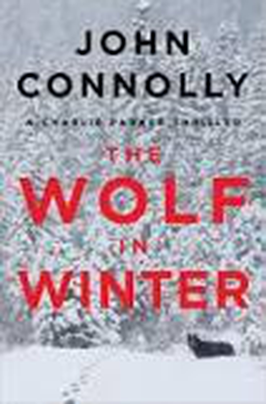 Author John Connolly