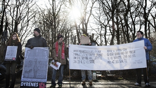 Protesters stage a demonstration outside Copenhagen Zoo against the killing of a healthy giraffe
