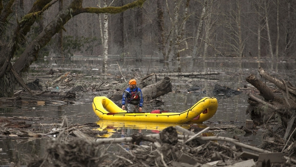 Search teams have been combing the area in search of survivors