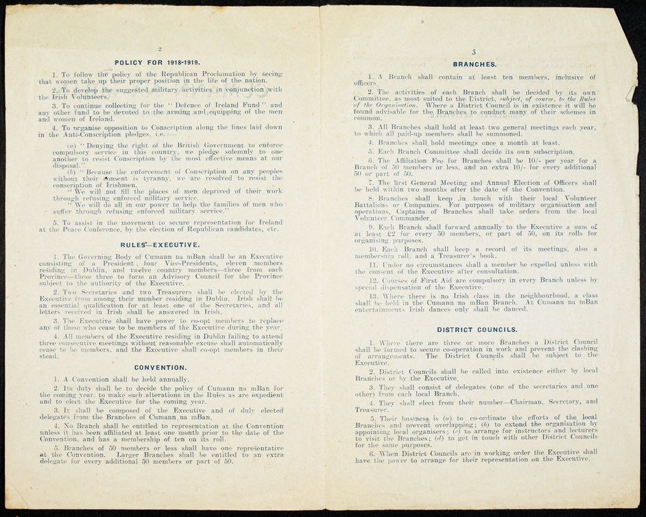 The constitution includes the pledge 'To follow the policy of the Republican Proclamation by seeing that women take up their proper position in the life of the nation' (Courtesy of the National Library of Ireland)
