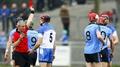 Dublin secure their Division 1A status