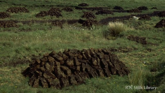 Turf bog in Casla, Co. Galway, 1977 © RTÉ Archives 0754/002