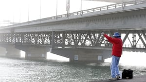 A fisherman tries to catch fish as the Auckland Harbour Bridge is covered in a blanket of fog in New Zealand