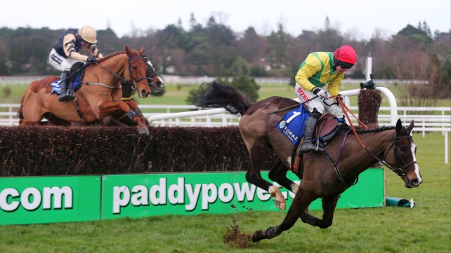 Aupcharlie hits the ground at Leopardstown