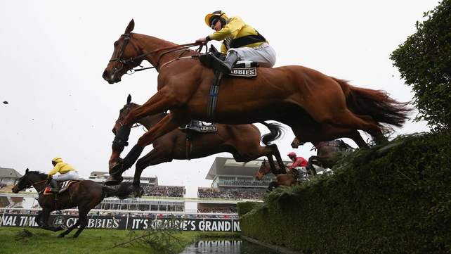 A field of 40 will face 30 jumps over a gruelling trip of four miles and three-and-a-half furlongs