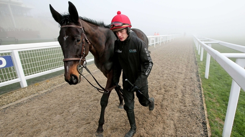 Paul Townend will ride Adriana Des Mottes for Willie Mullins