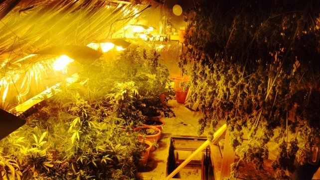 Gardaí found a sophisticated grow house at the Dangan home