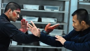 As with The Raid, the action sequences - jail, motorway, kitchen - are superbly realised