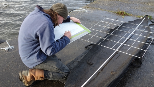 Recording a logboat from Rinnaknock Lough Corrib