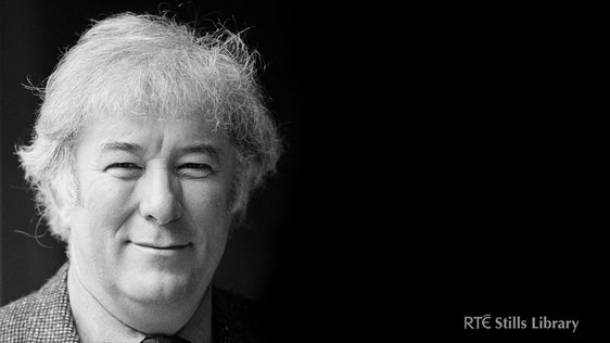 Seamus Heaney © RTÉ Archives 2259/027