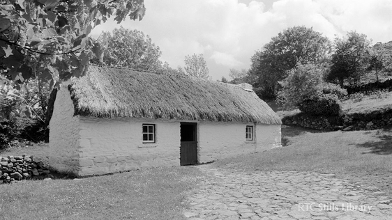 Dwyer McAllister Cottage, County Wicklow (1988)