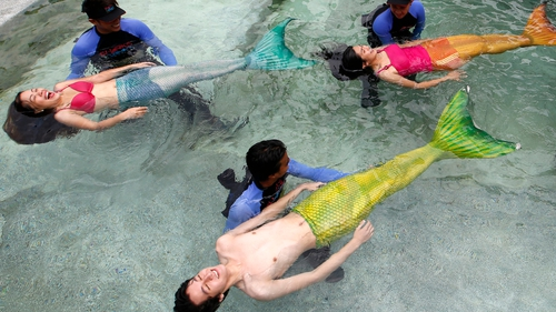 Filipino instructors teach participants how to swim like mermaids during the 'Mermaid Swim Experience' in Manila (Pic: EPA)