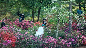Rory McIlroy hits a shot out of the the azaleas bushes behind the 13th green during the second round of the 2014 Masters at Augusta