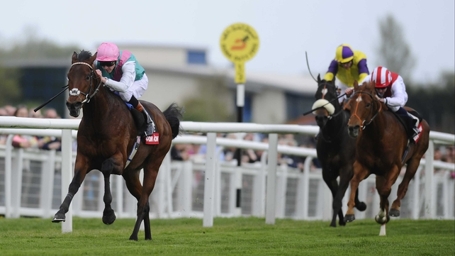 Kingman has been slashed to a best-price 7-4 for the 2000 Guineas in the wake of his devastating display at Newbury