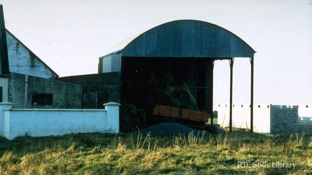 Hayes Family Farm, Kerry