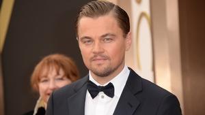 Leonardo DiCaprio's foundation made a donation of $1m to relief efforts