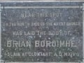 Music to salute Brian Boru
