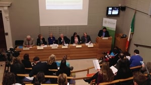 Report on Traveller ethnicity was published at Leinster House