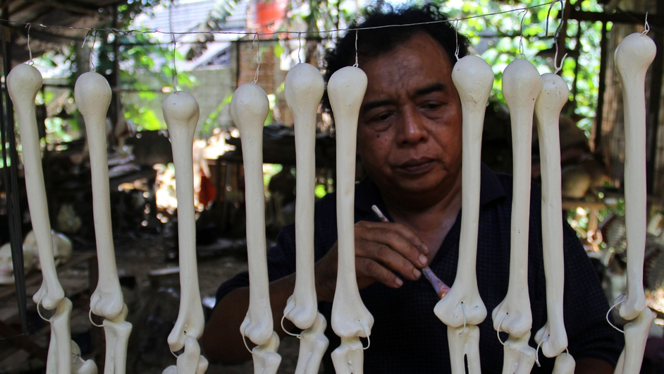 An Indonesian craftsman works on fiberglass bones for skeletons used to teach students