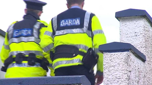 Gardaí appeal for information after alleged sexual assault